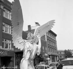 The Angel of Harvard Square