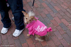 Highlight for Album: Planned Parenthood Rally - Boston Common